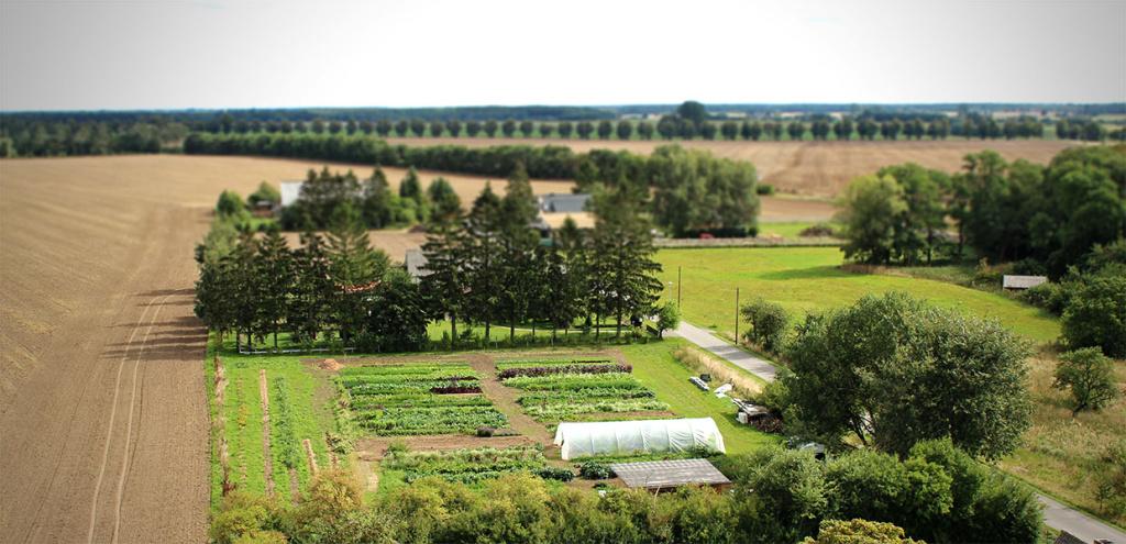 Wie Bio ist die Gärtnerei Schnelles Grünzeug