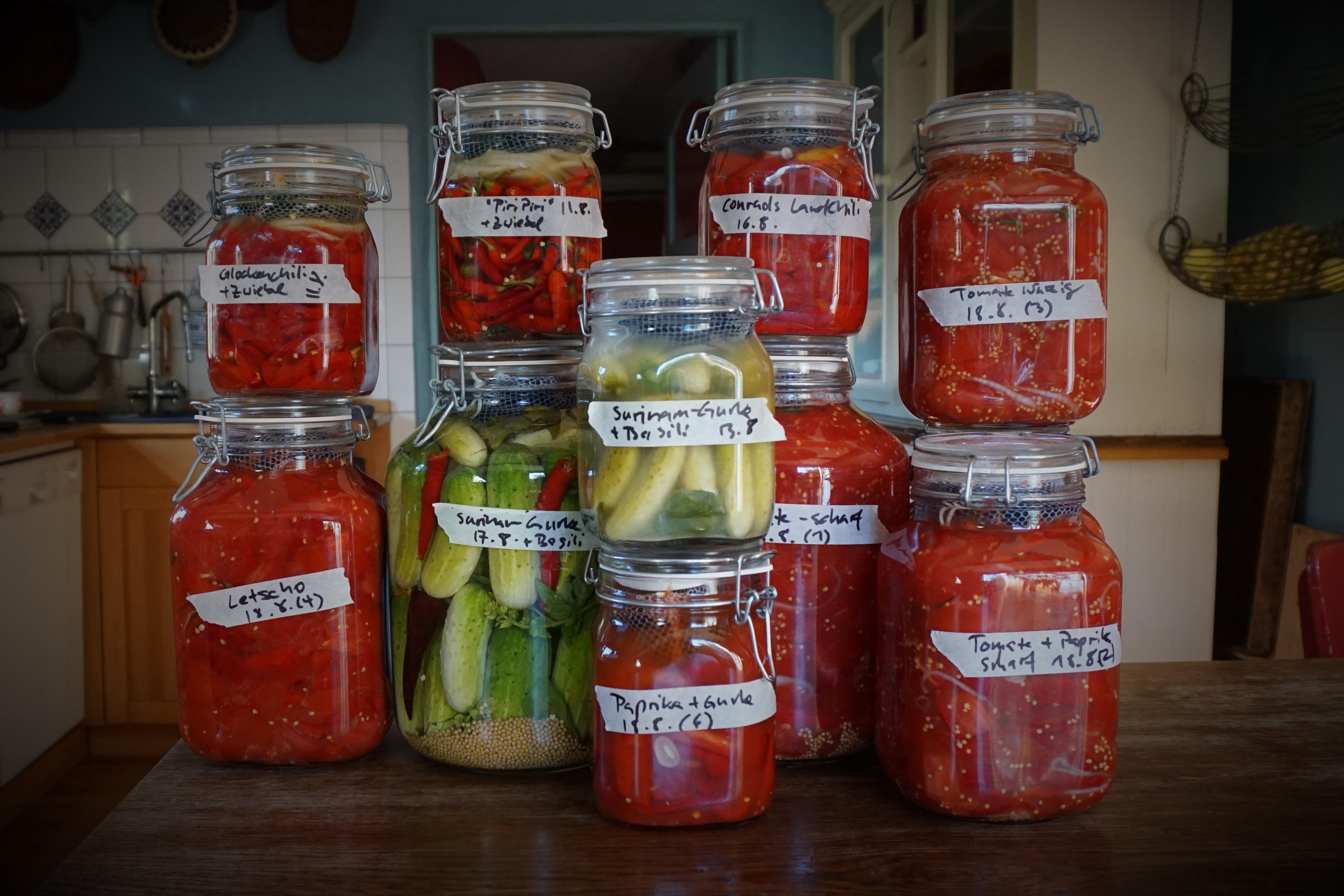 Grundlagen der Gemüse-Fermentation 3