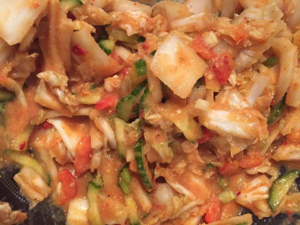 Schwäbisches Kimchi 1