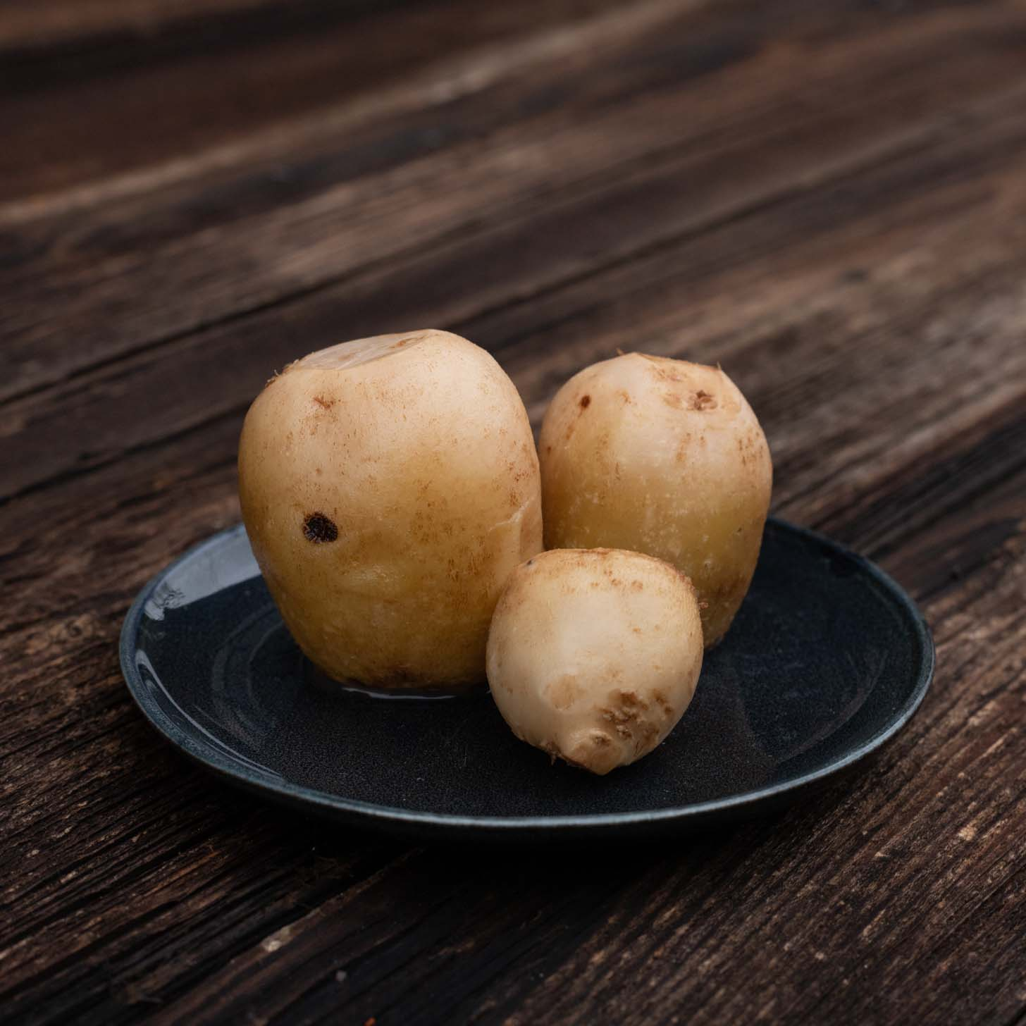Fermentiertes Gemüse von Schnelles Grünzeug, hier fermentierte Weiße Bete